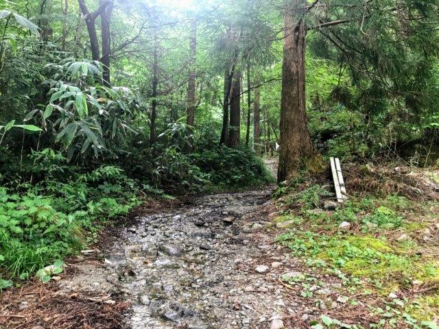 小秀山 二の谷登山道
