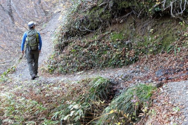 夜叉ヶ池 登山道 いち
