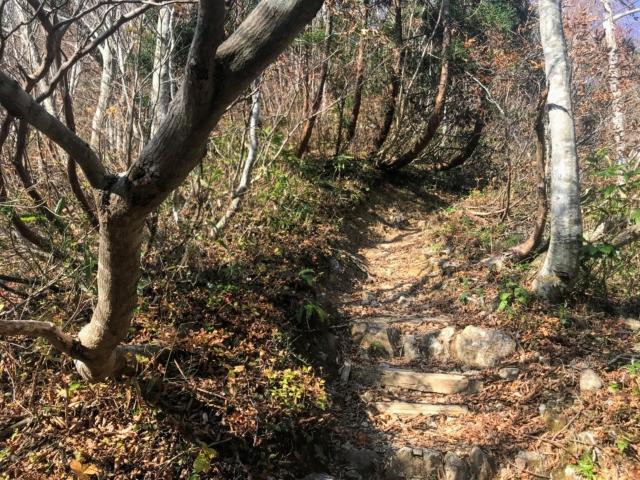 夜叉ヶ池 登山道