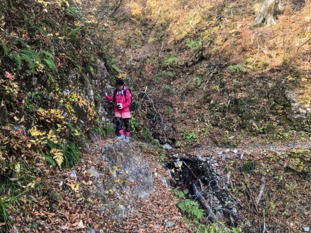 夜叉ヶ池 登山道 岩 しな