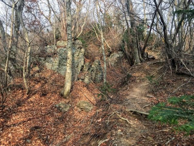 岩岳 憩い凹