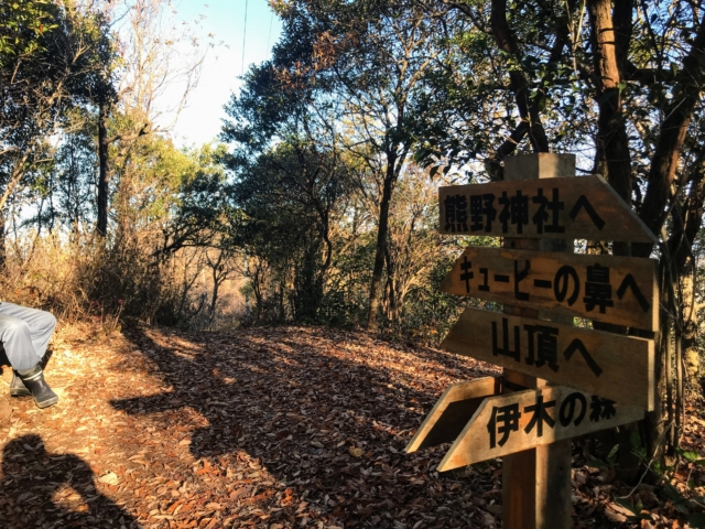 伊木山 花咲く稜線の道 熊野神社・伊木の森分岐