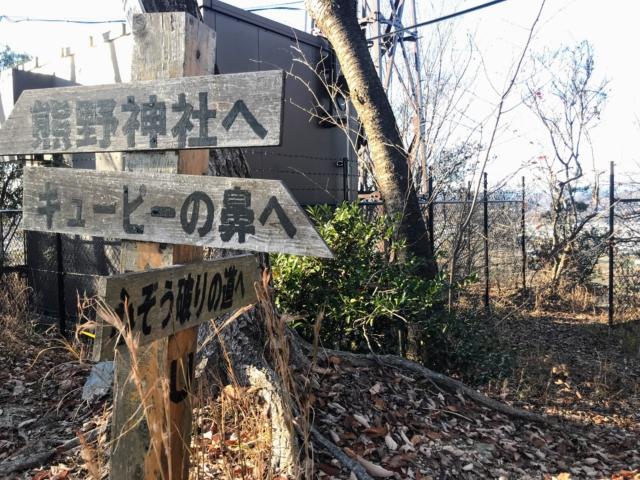 伊木山 山頂 フィールドセンター分岐