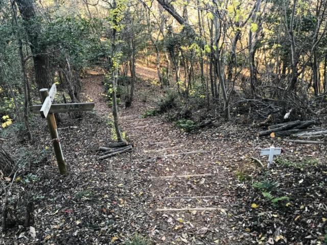 伊木山 花咲く稜線の道・陽だまりの道分岐