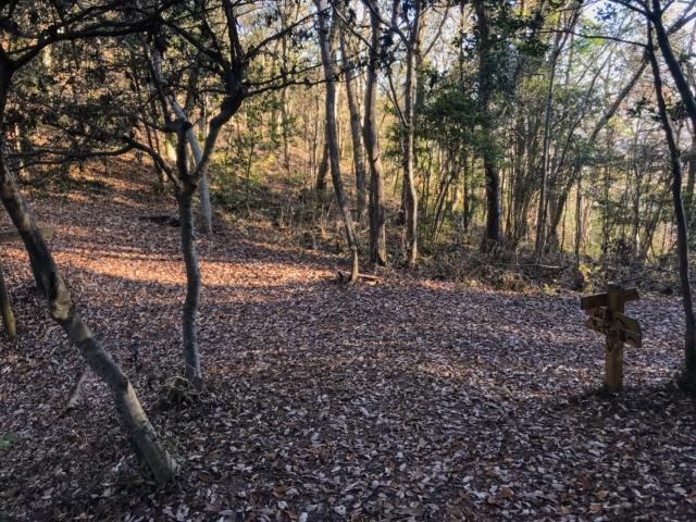 伊木山 花咲く稜線の道・水辺の森分岐