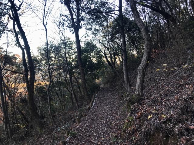 伊木山 陽だまりの道 登山道