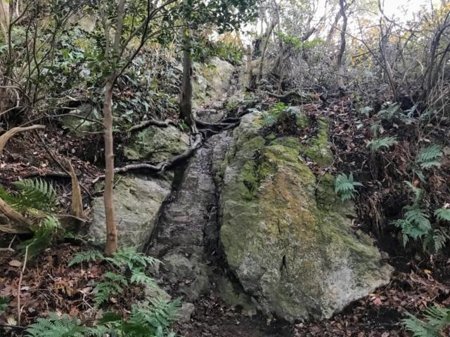三上山 表登山道 山頂直下の岩場