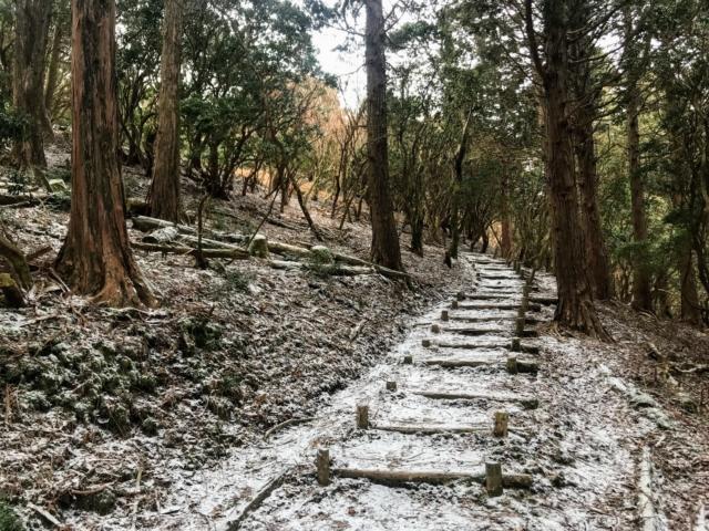 経ヶ峰 笹子谷ルート 丸太階段
