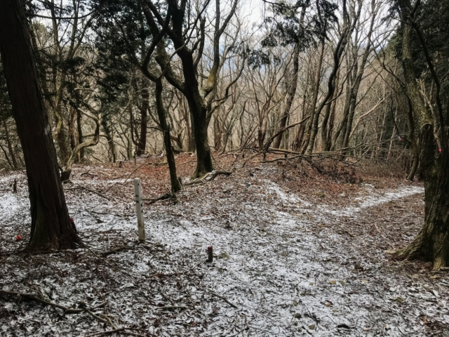 経ヶ峰・北笠岳縦走路 登山道