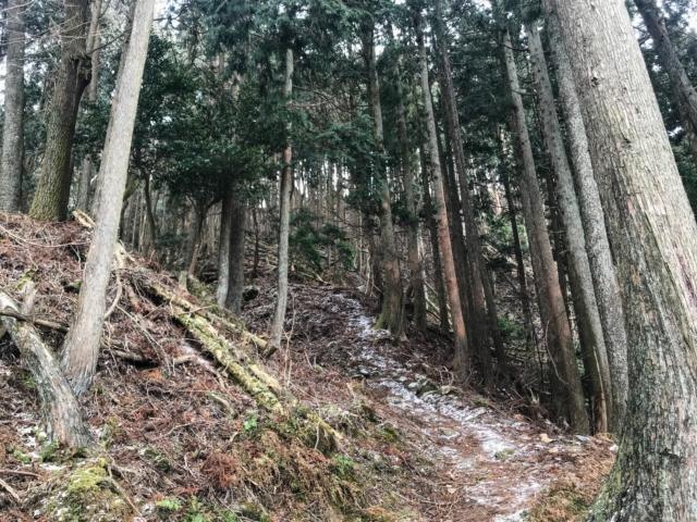 霊山 霊山寺ルート 登山道 雪