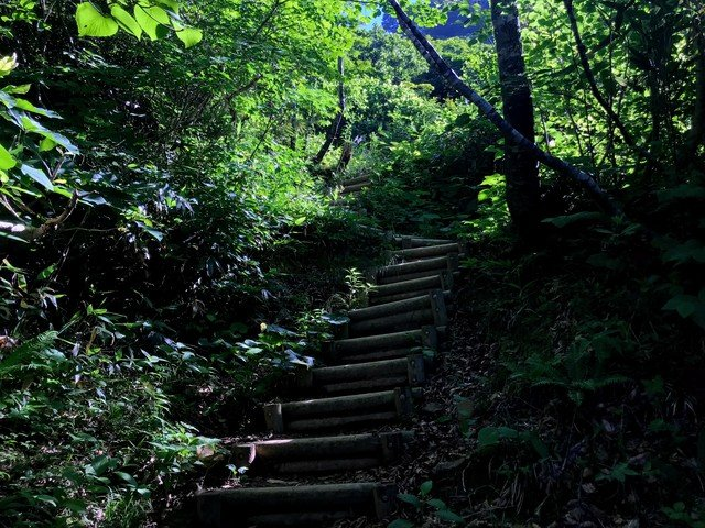 三ノ峰~別山 上小池ルート 丸太階段